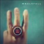 whalefall